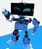DIY IronBot Robot Kit STEM Robotic Educational Robot Learning Kit for Children Multimode Progressive Assembly, Graphical Programming and Personalization Settings -