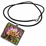 3dRose Danita Delimont - Chuck Haney - Flowers - Tapertip Onion flowering in The Painted Hills, Mitchell, Oregon, USA - Necklace With Rectangle Pendant (ncl_190036_1)