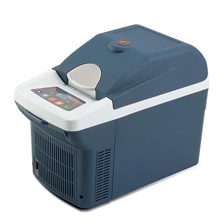 DD Mini Refrigerador Para Automóvil, Grey,grey: Amazon.es: Hogar