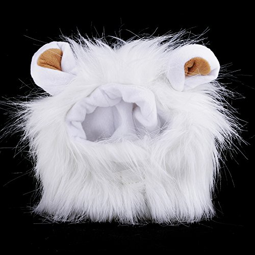 WEKA Fancy Lion Mane Wig For Cat Dog Hat Washable Adjustable Pet Costume Halloween Dress Up With Ears for Holiday Festival Cosplay Party Etc.(White)