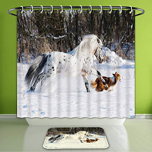 (Waterproof Shower Curtain and Bath Rug Set Animal Decor Collection Legendary Appaloosa Pony and Sable Border Collie Runs Gallop in Winter Bath Curtain and Doormat Suit for Bathroom 60