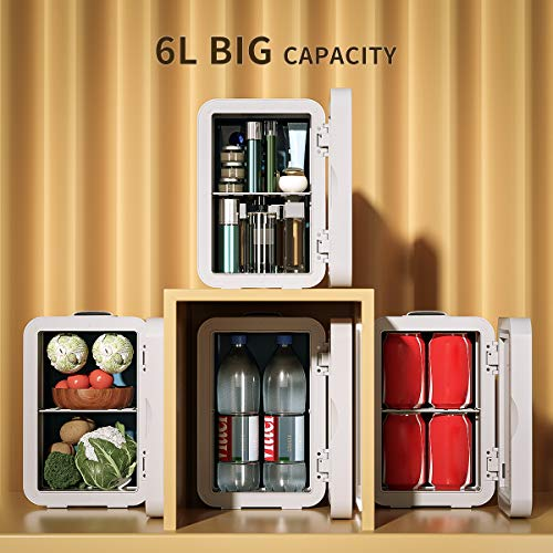 Mini Fridge 6 Liter AC/DC Portable Beauty Fridge Thermoelectric Cooler and Warmer for Skincare, Bedroom and Travel (Mirror & LED Design)