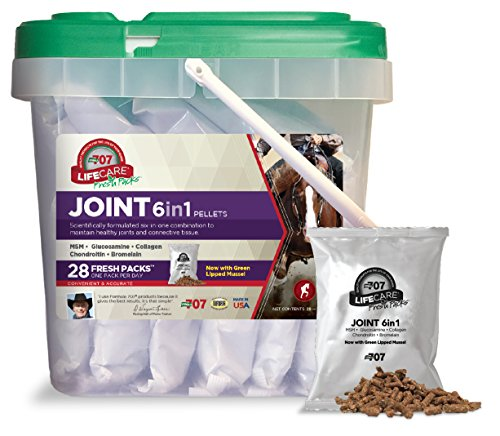 Formula 707 Joint 6in1 Equine Supplement, Daily Fresh Packs, 28 Day Supply - Green-Lipped Mussel, Glucosamine, Chondroitin, Collagen, Bromelain & MSM for Horses