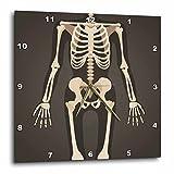 3dRose TNMGraphics Medicine - Headless Xray Skeleton - 10x10 Wall Clock (dpp_286309_1)