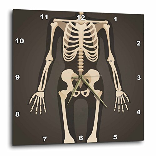3dRose TNMGraphics Medicine - Headless Xray Skeleton - 10x10 Wall Clock (dpp_286309_1) by 3dRose