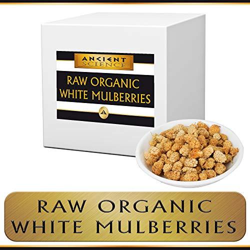 Raw Organic White Mulberries BULK 15 LB Supplier Sun Dried Mulberry - Organic, Kosher - Gluten-Free Vegan Supplement ()