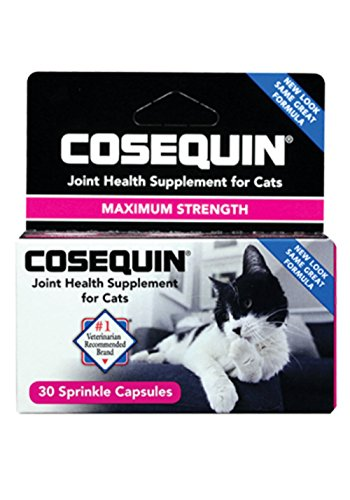 Cosequin For Cats - Cosequin Joint Health Supplement For Cats Professional Line 60 Sprinkle Capsules