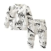 Baby Boys Dinosaur Printed Long Sleeve T-shirts Pants Outfits Set (6-9 Months)