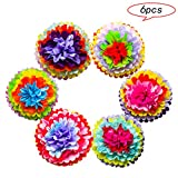 Mexican Fiesta Party Supplies, Tissue Paper Pom Poms Flowers Decorations for Wedding Birthday Carnival Rainbow Theme Cinco De Mayo Party