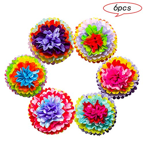 Mexican Fiesta Party Supplies, Tissue Paper Pom Poms Flowers Decorations for Wedding Birthday Carnival Rainbow Theme Cinco De Mayo Party by Storystore