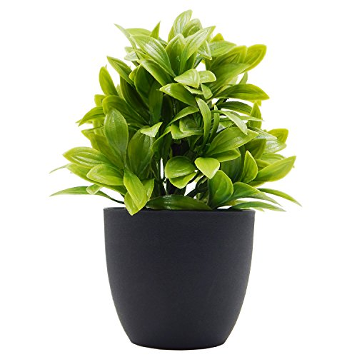 OFFIDIX Artificial Eucalyptus Plants with Black Vase for Office Desktop, Home and Friends' Gift Fake Plant with Plastic Pots for Home Decoration Potted Plants for Bookshelf (Light Green) ()