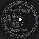 Slick Black Limousine - N.M.E. Flexi