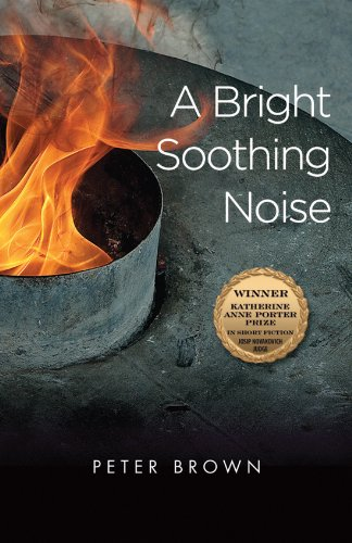 A Bright Soothing Noise (Katherine Anne Porter Prize in Short Fiction) pdf