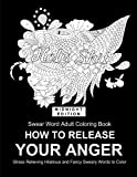img - for Fucking Sweet: How To Release Your Anger: Adult Coloring Book Swear Words (Midnight Coloring Books For Adult) book / textbook / text book