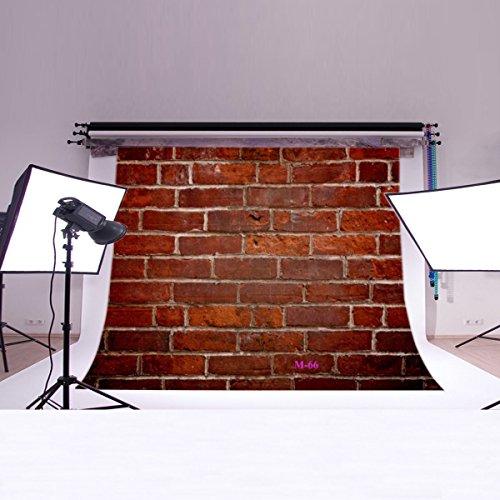 LB Backdrops Customized Background M 66 product image