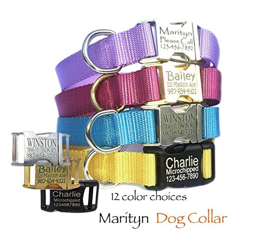 Mid. tone solid personalized dog collar Laser engraved buckle dog collar Pet tag collar Adjustable custom handmade dog accessory for boy dogs girl dogs by Marityn ()