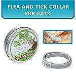 Fesjoy-Collare-Antipulci-Collare-per-Gatti-Naturalmente-Olio-Essenziale-Regolabile-Impermeabile-8-Mesi-di-Protezione