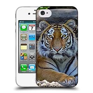 Super Galaxy Coque de Protection TPU Silicone Case pour // V00000004 Tigre // Apple iPhone 4 4S 4G