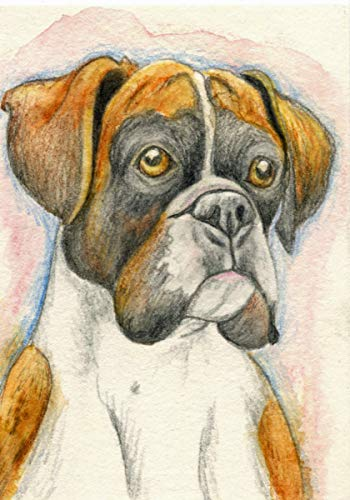 ACEO ATC Boxer Puppy Pet Dog Colored Pencil Art Original -Free Shipping-Carla Smale