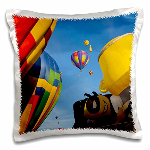 Hot Air Balloon Fiesta Albuquerque - 8