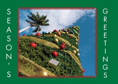 Birchcraft Studios 2133 West Coast Christmas - Gold Lined Envelope with White Lining - Hunter Ink - Pack of 25 ()