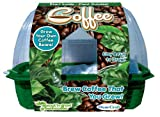 Dunecraft Sprout 'n Grow Coffee Science Kit