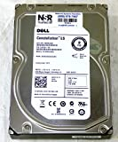 Dell - 2TB 7.2K RPM 6Gb/s 3.5'' SAS HD - Mfg # R755K (comes w/ drive & tray)