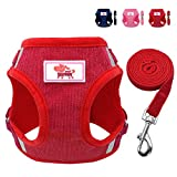 Beirui Reflective Dog Vest & Leash Set - Soft Harness for Small Dogs & Cats - Comfort Step-in Mesh Padded Harness with 4ft Leash Pet Supplies,Red chest for 11''