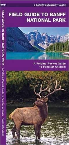 Banff National Park, Field Guide to: A Folding Pocket Guide to Familiar Species (A Pocket Naturalist Guide)