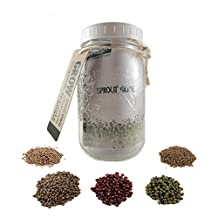 Fungaea Organic Sprout Kit with stainless steel mesh lid