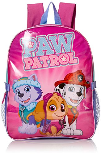 Paw Patrol Little Girls Skye and Friends 15