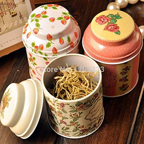 Tea Box - Vintage Style Garden Flower Series Diy Multifunction Tea Box Cut Tin Clean Up Storage Container - Theory Leaves Loose Vintage Kettle Portable Hanging Package Gifts Natural