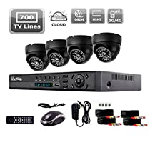 Liview 800tvl Indoor Day/night Security Camera and 4ch Hdmi 960h Network DVR System