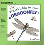 What's It Like to Be a Dragonfly?, Jinny Johnson, 1622430476