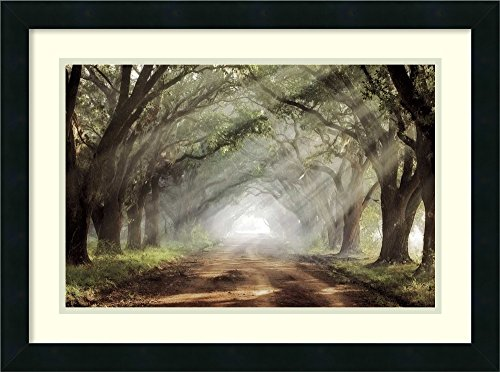 (Framed Art Print 'Evergreen Plantation' by Mike Jones)