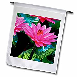 Danita Delimont - Hawaii - Waterlily, Hawaii, USA - US12 DPB1650 - Douglas Peebles - 12 x 18 inch Garden Flag (fl_89742_1)
