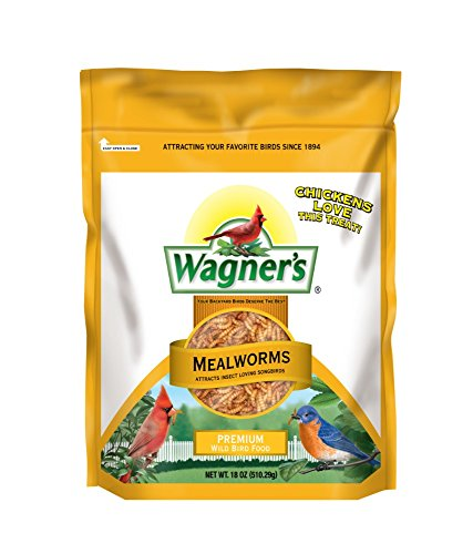 Wagner's 58005 Dried Mealworms Bird Food, 18-Ounce