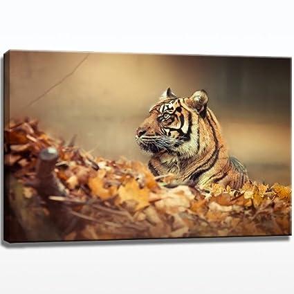 Tiger en hojas imagen sobre lienzo - 80 cm x 60 cm lienzo ...