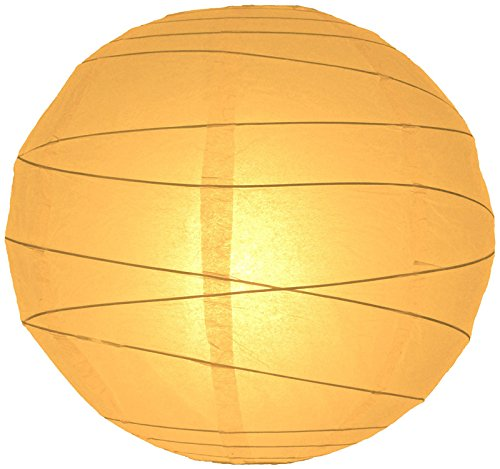 "Quasimoon 24"" Papaya Round Paper Lantern, Crisscross Ribbing, Hanging Decoration by PaperLanternStore"