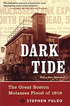 Dark Tide: The Great Molasses Flood of 1919 by [Puleo, Stephen]