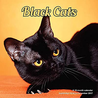 Black Cats Calendar - 2017 Wall calendars - Cat Calendar - Kitten Calendar - Monthly Wall Calendar by Magnum