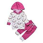 2pcs Baby Girl Floral and Deer Printed Hoodies + Long Pants Winter Warm Outfits Clothes Set (0-6M, Rose)