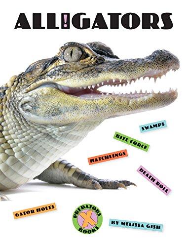 X-Books: Alligators image