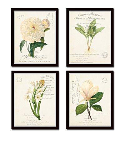 White Antique Giclee Art Fine (French Botanical Collage Print Set No. 3 Set of 4 Fine Art Giclee Prints - Unframed)