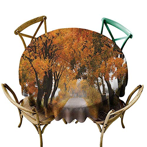 familytaste Fall,Tabletop Cloth Round Serene Vivid Maple Trees D 50