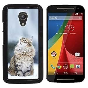Motorola Moto G2 II / Moto G (2nd gen) / Moto G (2014) , Radio-Star - Cáscara Funda Case Caso De Plástico (Norwegian Snow Cat)