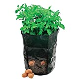 Amgate Garden Potato Grow Bag Vegetables Planter with Access Flap for Harvesting ~ Eco-friendly Waterproof Pe ~ 14' Diameter X 18' Height (1)