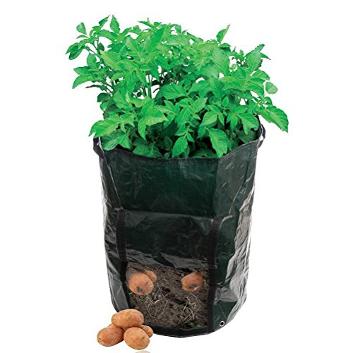 Amgate 2-pack Garden Potato Grow Bag Vegetables Planter Tub with Access Flap for Harvesting ~ Eco-friendly Waterproof Pe (2) (Bag Potato Grow)