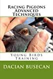 Racing Pigeons Advanced Techniques: Young Birds