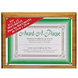 NuDell 8.5-Inch X 11-Inch Economical Award Plaque, Oak